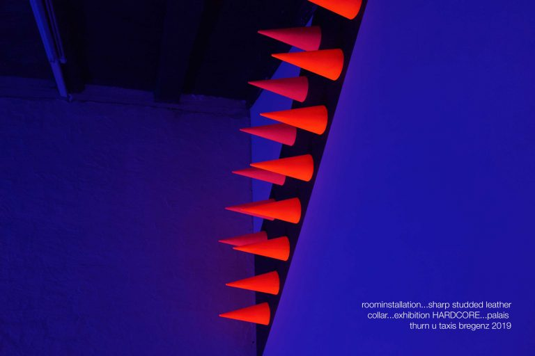 Fulterer Scherrer, Roominstallation, Palais Thurn und Taxis, 2019