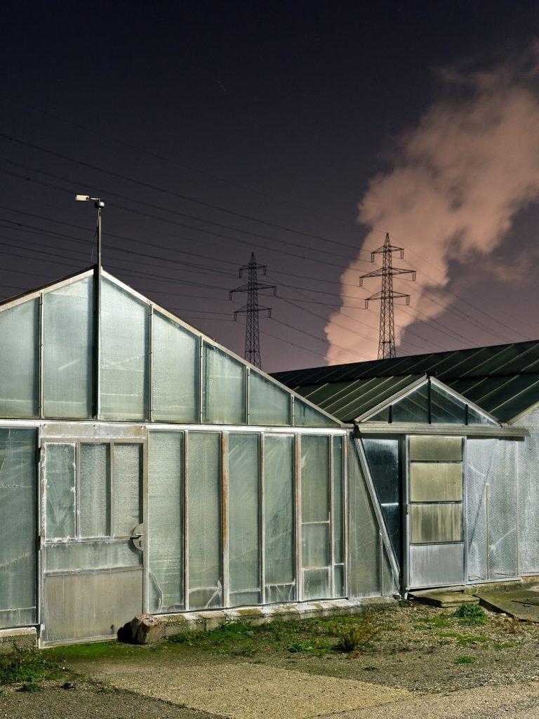 Greenhouse, 2020